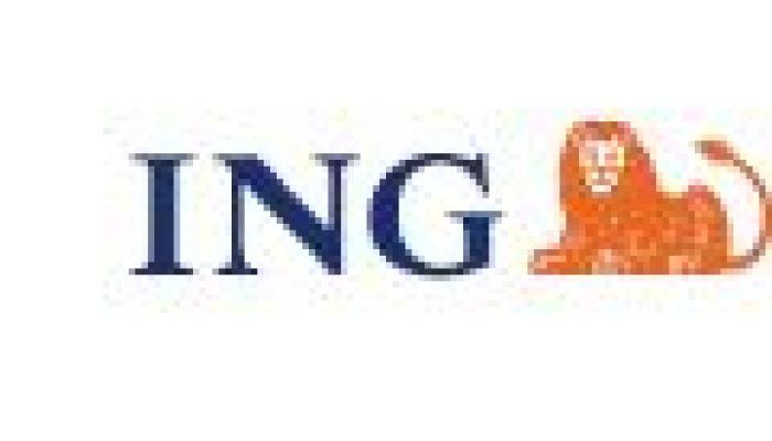 ING Dutch Office Fund online