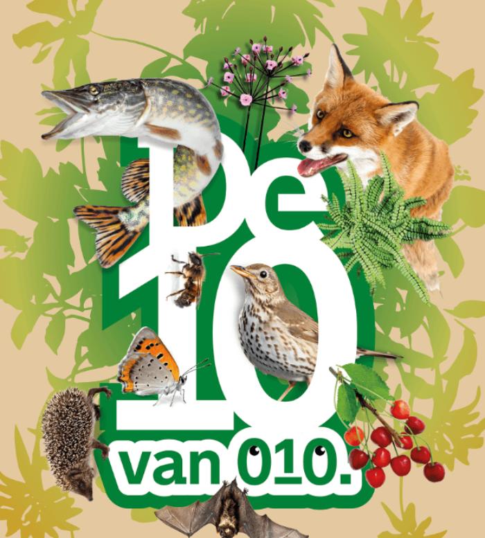 Biodiversiteit in Rotterdam op het netvlies